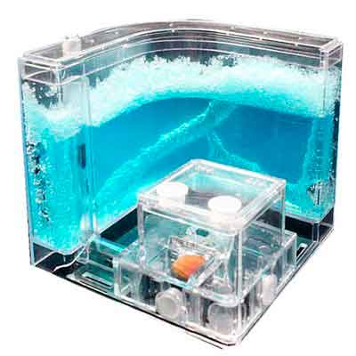 NAVAdeal Ant Castle Experiment and Toy Allows Study of Ant Farm's Social Structure