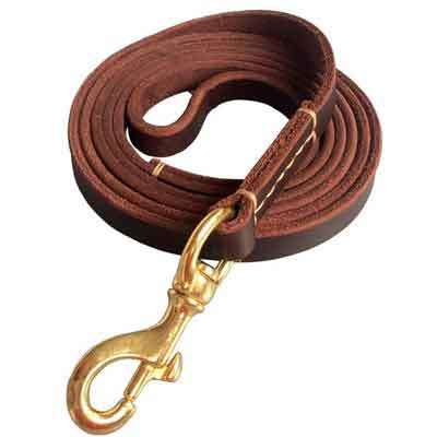 Fairwin Brown 6FT/ 5FT Genuine Leather Dog Leash Leads Rope for Large/ Medium/ Small Dogs Training/ Walking