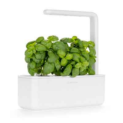 Click & Grow Smart Garden 3 | Indoor Fresh Herb Growing Kit With 3 Basil Cartridges | Self Watering Planter & Patented Nano-Tech Growth Medium | Soil Full Of Nutrients