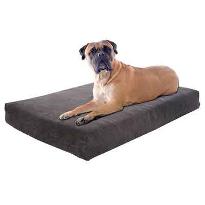 Pet Support Systems Dog Beds - Orthopedic Memory Foam - 100% Made in USA - Luxury Large Breed Washable Pet Bed