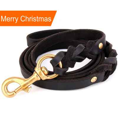 Faylife Leather Dog Leash - 6 FT Braided Heavy Duty Leather Dog Leash for Large Medium Small Dogs Training and Walking